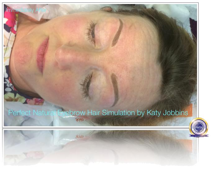 57-1-Katy Jobbins Permanent Makeup Perfect Natural Eyebrow Hair Simulation