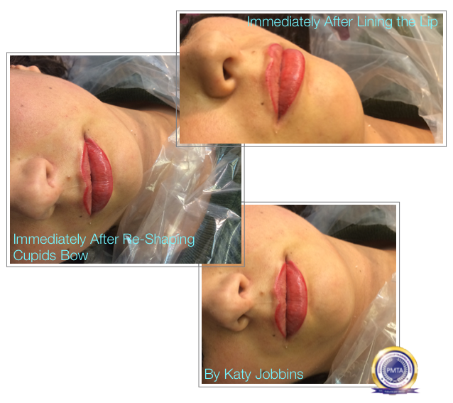 Immediately After Lining the Lip - Step by Step Permanent Makeup Full Lip Tint